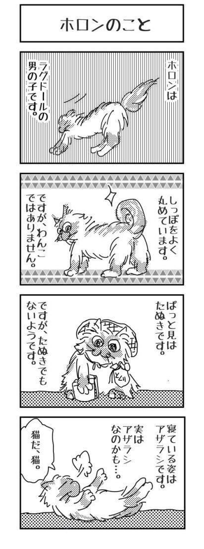 猫漫画 ホロンのこと